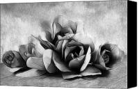 Photomanipulation Canvas Prints - Black and White Is Beautiful Canvas Print by Zeana Romanovna