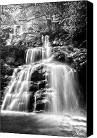 Long Pyrography Canvas Prints - Black and White Shenandoah Falls Canvas Print by Shane York