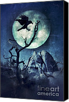 Black Crow Canvas Prints - Black Bird Landing on a Branch in the Moonlight Canvas Print by Jill Battaglia