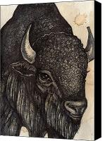 Buffalo Mixed Media Canvas Prints - Black Buffalo Canvas Print by Lynnette Shelley