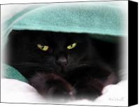 Moody Canvas Prints - Black Cat Secrets Canvas Print by Bob Orsillo