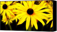 Susan Canvas Prints - Black eyed Susan fractalius Canvas Print by Sharon Lisa Clarke