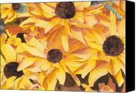 Susan Canvas Prints - Black Eyed Susans Canvas Print by Ken Powers