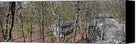 Justin P. Wilson Canvas Prints - Black Mountain Outcrops Canvas Print by Paul Mashburn