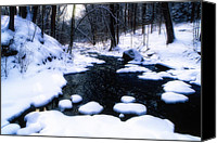 Creek Bed Canvas Prints - Black River Winter Scenic Canvas Print by George Oze