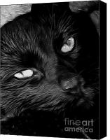 Kitten Greeting Card Digital Art Canvas Prints - Black Silk Canvas Print by Denise Oldridge