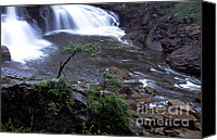 Blue Jeans Canvas Prints - Blackwater Falls Canvas Print by Thomas R Fletcher