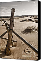 Coral Pink Sand Dunes Canvas Prints - Bleak Canvas Print by Heather Applegate