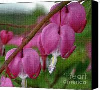 Titles Canvas Prints - Bleeding Hearts 2 Canvas Print by Diane E Berry