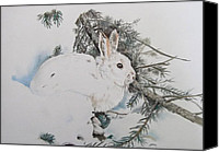 Rabbit Pastels Canvas Prints - Blending In Canvas Print by Turea Grice