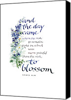 Illustration Canvas Prints - Blossom I Canvas Print by Judy Dodds