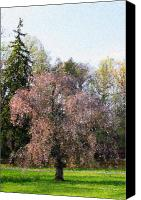 Debbie Canvas Prints - Blossom Tree Impressionist Canvas Print by Deborah  Crew-Johnson