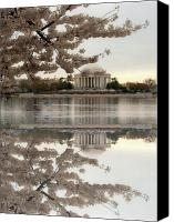 D.c. Canvas Prints - Blossoms Reflection Canvas Print by Frank Garciarubio