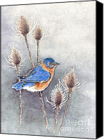 Nan Wright Canvas Prints - Blue Bird Canvas Print by Nan Wright