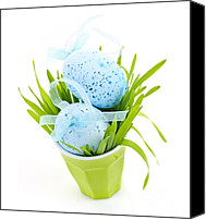 Celebrating Canvas Prints - Blue Easter eggs and green grass Canvas Print by Elena Elisseeva