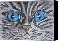 Stripped Cat Canvas Prints - Blue Eyed Stripped Cat Canvas Print by Kathy Marrs Chandler