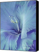 Purple Gladiolas Canvas Prints - Blue Gladiolus Flower Canvas Print by Jennie Marie Schell
