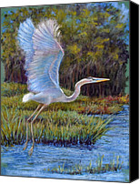 Water Pastels Canvas Prints - Blue Heron in Flight Canvas Print by Susan Jenkins