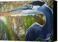 Jon Ferrentino Canvas Prints - Blue Heron Canvas Print by Jon Ferrentino
