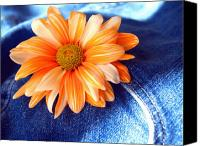 Blue Jeans Canvas Prints - Blue Jeans and Daisies Canvas Print by Wendy Mogul