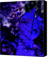 Blue Leaf Canvas Prints - Blue Leaf Canvas Print by James Granberry
