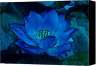 Lotus Pond Canvas Prints - Blue Lotus Canvas Print by Madeline M Allen