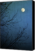 Bare Tree Canvas Prints - Blue Moon Canvas Print by Susan McDougall Photography