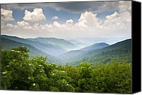 Craggy Canvas Prints - Blue Ridge Parkway - Craggy Gardens Overlook Canvas Print by Dave Allen