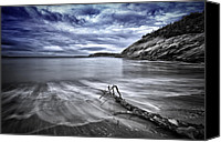 Driftwood Canvas Prints - Blue sky ... High tide Canvas Print by Chad Tracy
