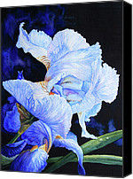 Blue Flowers Painting Canvas Prints - Blue Summer Iris Canvas Print by Hanne Lore Koehler