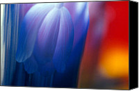 Unique Glass Art Canvas Prints - Blue Tulip Canvas Print by Etti Palitz