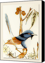 Wren Digital Art Canvas Prints - Blue wren 01 Canvas Print by Kevin Chippindall