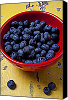 Bowls Canvas Prints - Blueberries in red bowl Canvas Print by Garry Gay