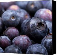 Huckleberry Canvas Prints - Blueberry background Canvas Print by Jane Rix