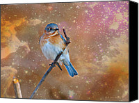 Walker Digital Art Canvas Prints - Bluebird Perched In Space Canvas Print by J Larry Walker