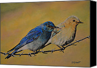 Two Pastels Canvas Prints - Bluebirds Canvas Print by Joanne Grant