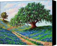 Road Painting Canvas Prints - Bluebonnet Road Canvas Print by David G Paul