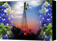 Rural Texas Canvas Prints - Bluebonnets and Windmill Canvas Print by Stephen Anderson