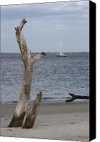 Dana Oliver Canvas Prints - Boat at Driftwood Beach  Canvas Print by Dana  Oliver