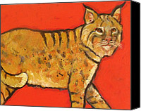 Santa Fe Canvas Prints - Bobcat Watching Canvas Print by Carol Suzanne Niebuhr