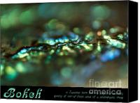 Abalone Seashell Canvas Prints - Bokeh Abalone Canvas Print by Joy Gerow