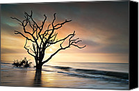 Seafoam Canvas Prints - Boneyard Sunrise - Botany Bay Edisto Island SC Canvas Print by Dave Allen
