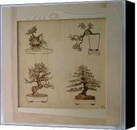 Pyrography Canvas Prints - Bonsai Pyrographic Art Original Panel with Frame by Pigatopia Canvas Print by Shannon Ivins