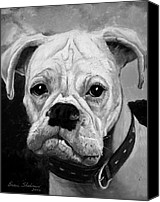 Dog Painting Canvas Prints - Boo the Boxer Canvas Print by Enzie Shahmiri