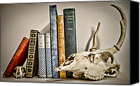 Creepy Canvas Prints - Books and Bones Canvas Print by Heather Applegate
