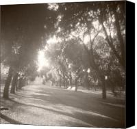 Empire Photo Canvas Prints - Borghese Gardens Path Canvas Print by Beverly Brown Prints