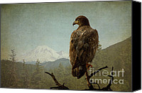 Bald Eagle Canvas Prints - Born Free Canvas Print by Reflective Moments  Photography and Digital Art Images