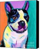 Rainbow Tapestries Textiles Canvas Prints - Boston Terrier - Jack Boston Canvas Print by Alicia VanNoy Call