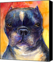 Cute Drawings Canvas Prints - Boston Terrier dog portrait painting in Watercolor Canvas Print by Svetlana Novikova