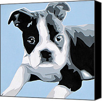 Dogs Painting Canvas Prints - Boston Terrier Canvas Print by Slade Roberts